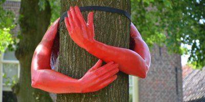 bomen over bomen 1